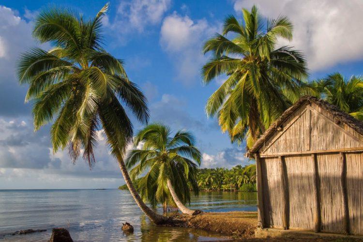 Un viaggio nell'isola del Madagascar? Ecco, come organizzarlo in sicurezza