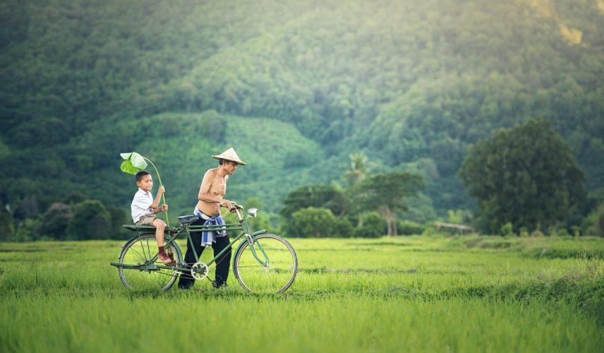 Cicloturismo, idee per vacanze in bicicletta